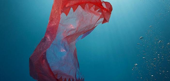 Zmaga za plastično industrijo: en glas premalo za prepoved plastičnih vrečk