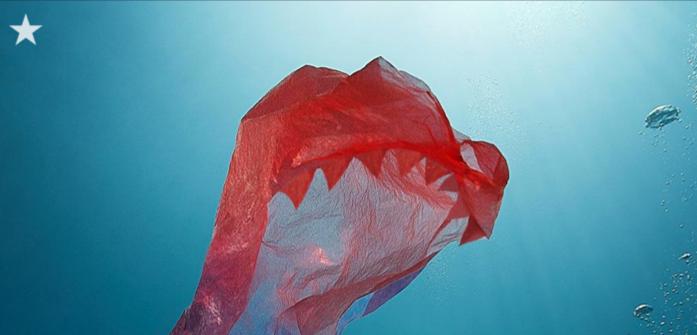 Slovenija naj zaostri stališče o zmanjševanju plastike