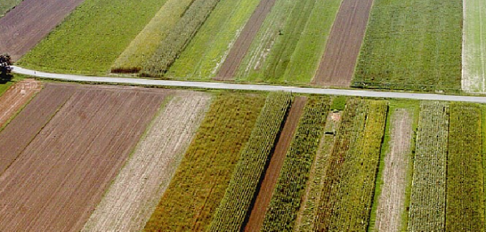 Socialdemokratski tandem uvaja novo obliko prekarnega dela – tokrat v kmetijstvu