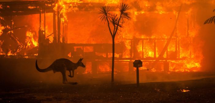 Dež ne bo odpravil vzrokov za požare v Avstraliji
