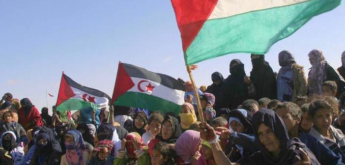 Pravica za Zahodno Saharo!